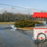 carretto x gelati economico basic rosso (3)